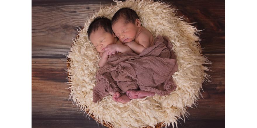 twins-1628843_1280.jpg